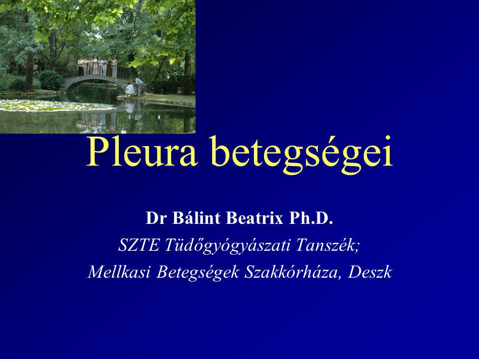 Pleura betegségei Dr Bálint Beatrix Ph.D. SZTE Tüdőgyógyászati Tanszék; Mellkasi Betegségek Szakkórháza, Deszk