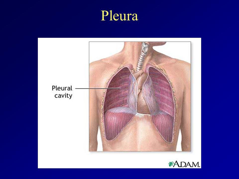 Pleurális folyadék patofiziológiája  pulm.capill.