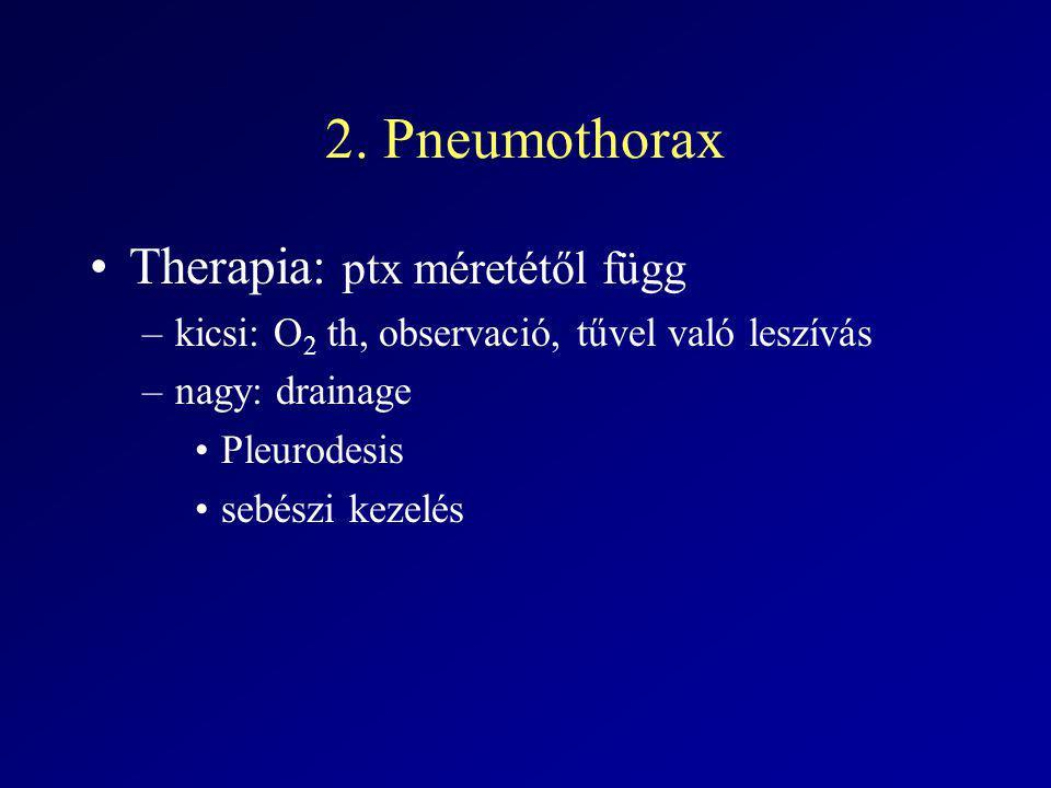2. Pneumothorax Therapia: ptx méretétől függ –kicsi: O 2 th, observació, tűvel való leszívás –nagy: drainage Pleurodesis sebészi kezelés