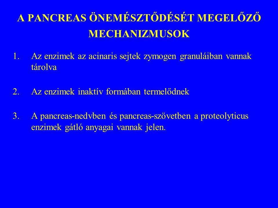 A PANCREAS ÖNEMÉSZTŐDÉSÉT MEGELŐZŐ MECHANIZMUSOK 1.Az enzimek az acinaris sejtek zymogen granuláiban vannak tárolva 2.Az enzimek inaktív formában term