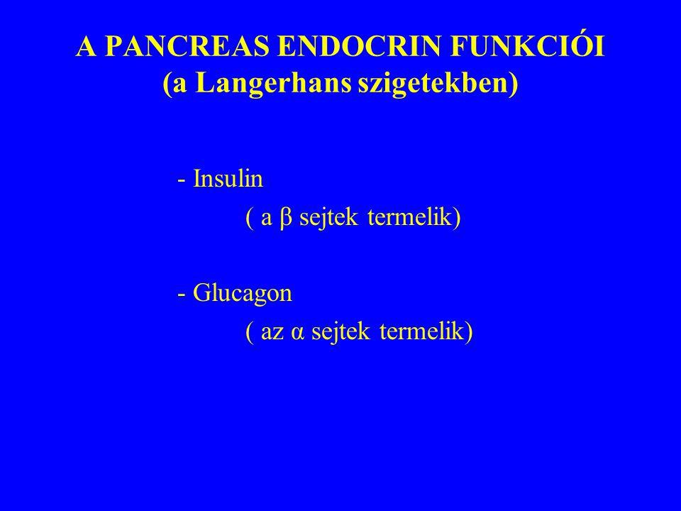 A CHRONICUS PANCREATITIS TÜNETEI -Fájdalom - jellemzői - lokalizációja - kisugárzása -Testsúly csökkenés -Sárgaság -Késői szövődmények: steatorrhea diabetes mellitus