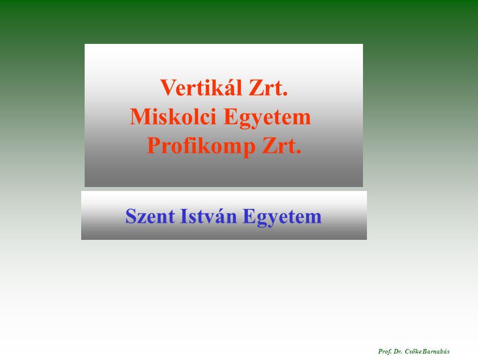Polgárdi.2014. december 16. Prof.Dr.Csőke Barnabás Vertikál Zrt.