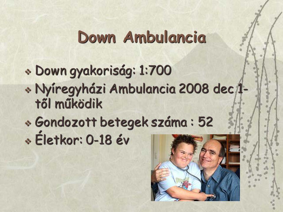 Down Ambulancia  Down gyakoriság: 1:700  Nyíregyházi Ambulancia 2008 dec 1- től működik  Gondozott betegek száma : 52  Életkor: 0-18 év