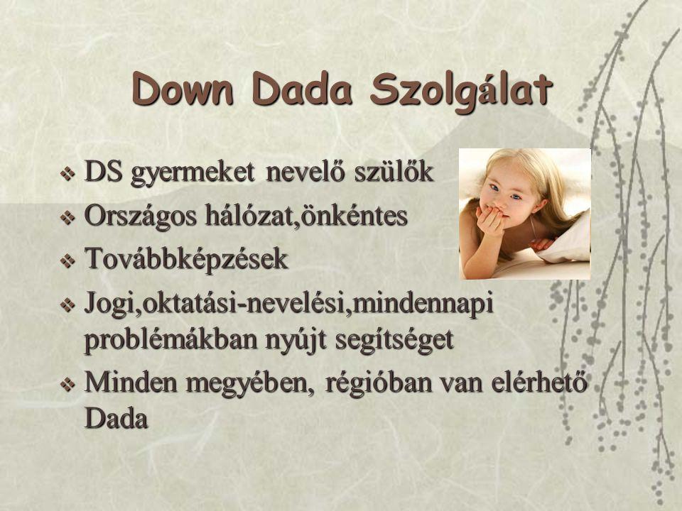 Down Dada Szolg á lat  DS gyermeket nevelő szülők  Országos hálózat,önkéntes  Továbbképzések  Jogi,oktatási-nevelési,mindennapi problémákban nyújt