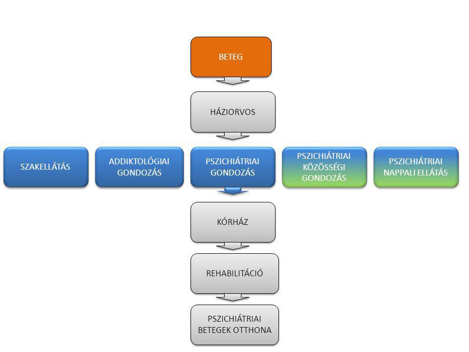 Pszichiátriai beteg ellátásának folyamata Kórházi kezelés 1.