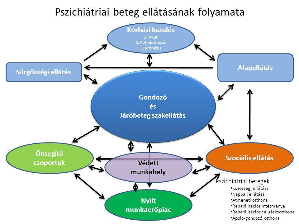 Pszichiátriára fordított források 2010-ben