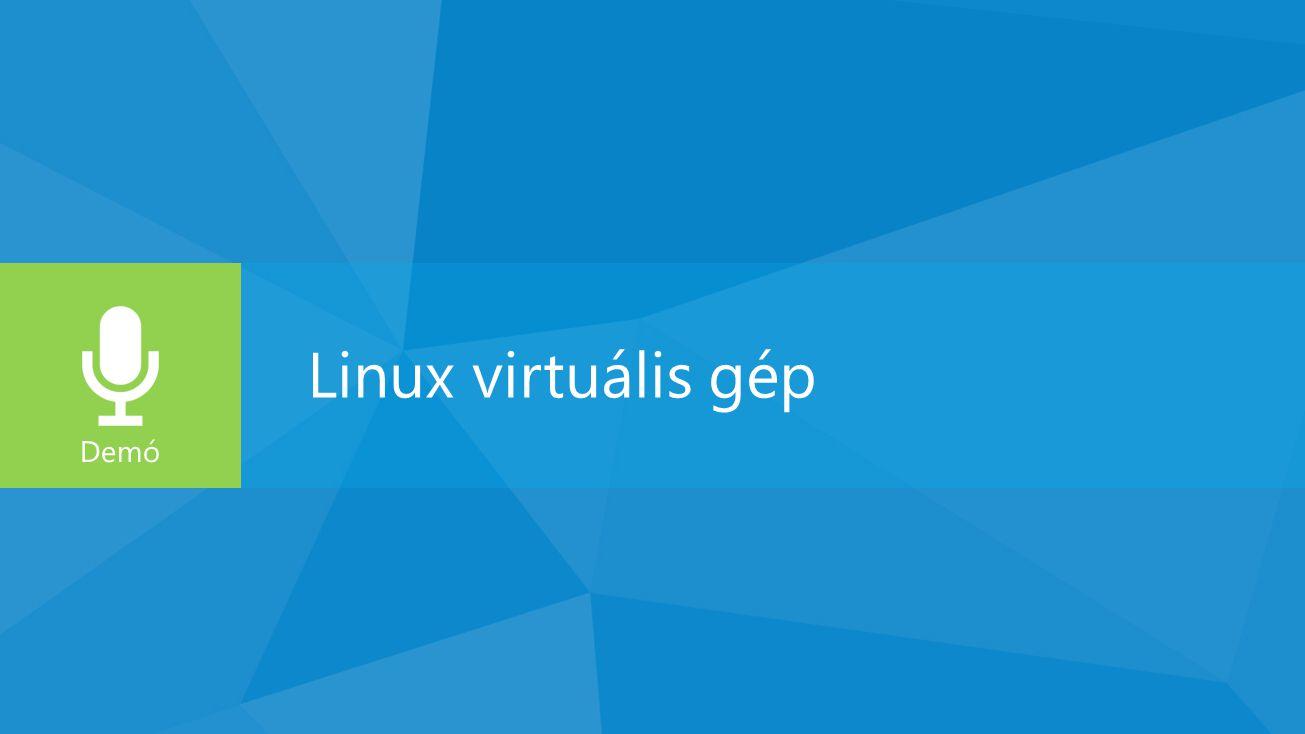 Alkalmazás VPN-nel