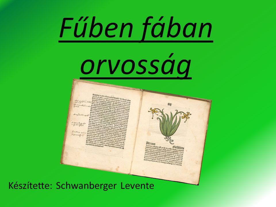 Fűben fában orvosság Készítette: Schwanberger Levente