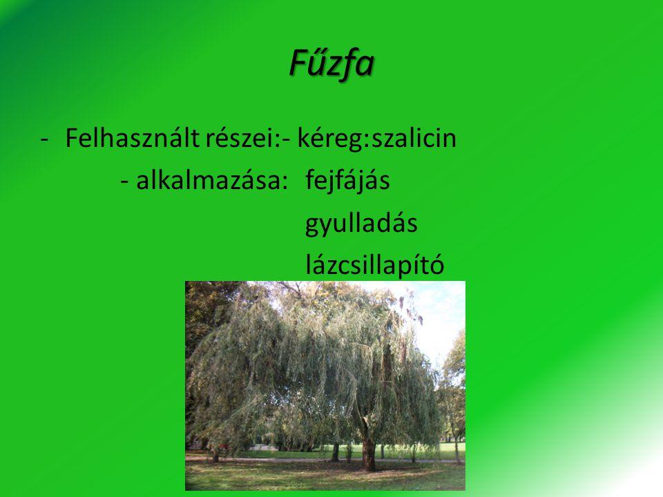 Fűzfa -Felhasznált részei:- kéreg:szalicin - alkalmazása:fejfájás gyulladás lázcsillapító