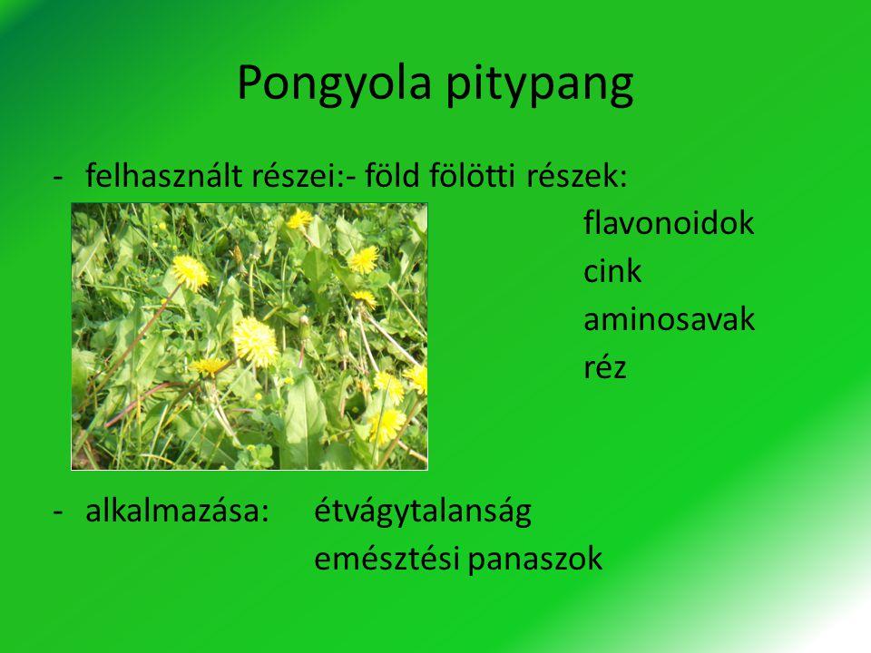 Pongyola pitypang -felhasznált részei:- föld fölötti részek: flavonoidok cink aminosavak réz -alkalmazása:étvágytalanság emésztési panaszok