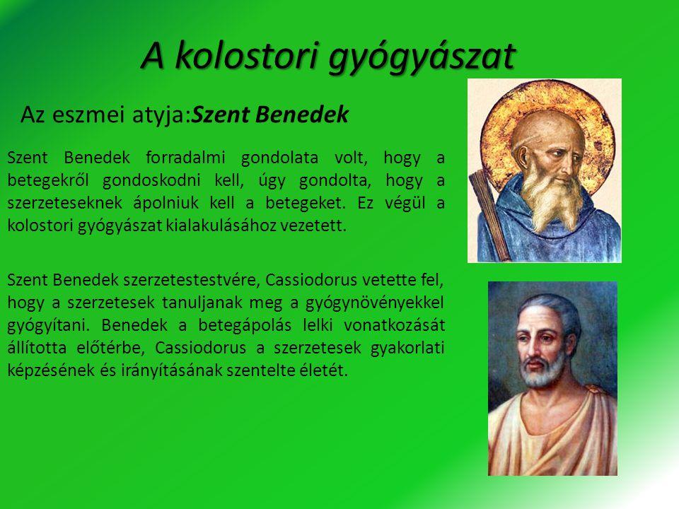 A kolostori gyógyászat Szent Benedek forradalmi gondolata volt, hogy a betegekről gondoskodni kell, úgy gondolta, hogy a szerzeteseknek ápolniuk kell