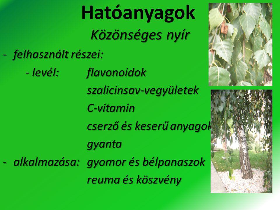 Hatóanyagok Közönséges nyír -felhasznált részei: - levél:flavonoidok - levél:flavonoidok szalicinsav-vegyületek szalicinsav-vegyületek C-vitamin C-vit