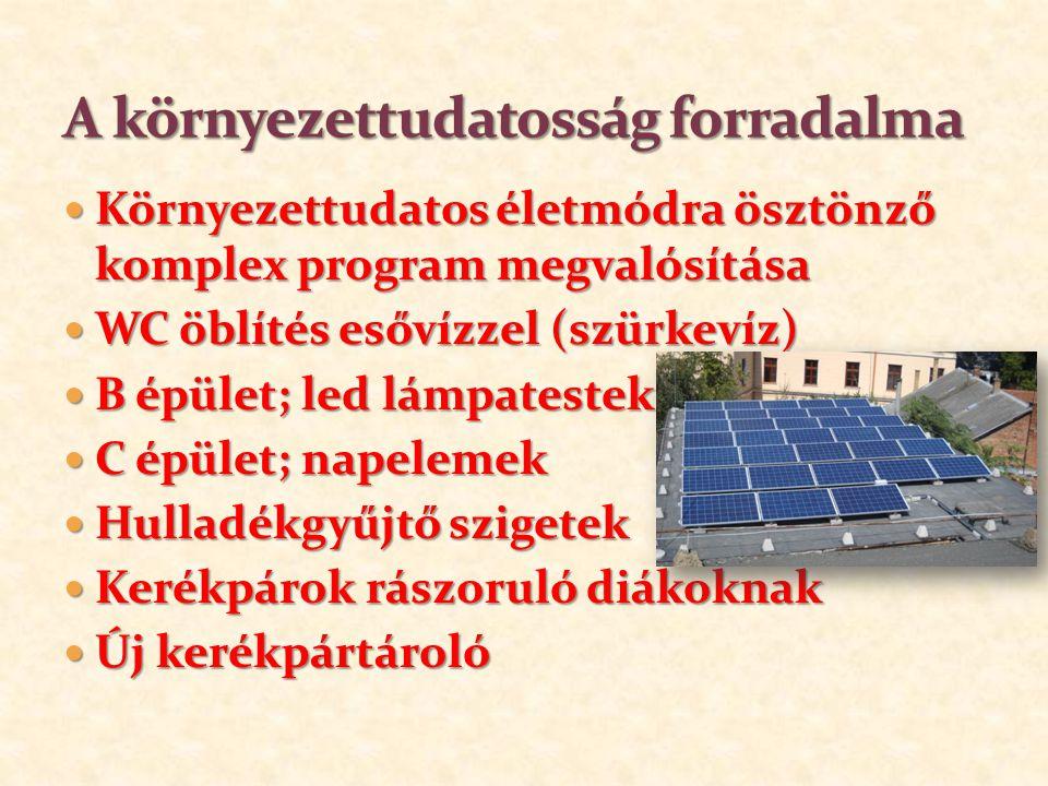 1919-ben román csapatok kifosztották az iskolát, letartóztatták az iskola igazgatóját Dr.