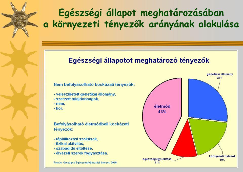 Egészségi állapot meghatározásában a környezeti tényezők arányának alakulása