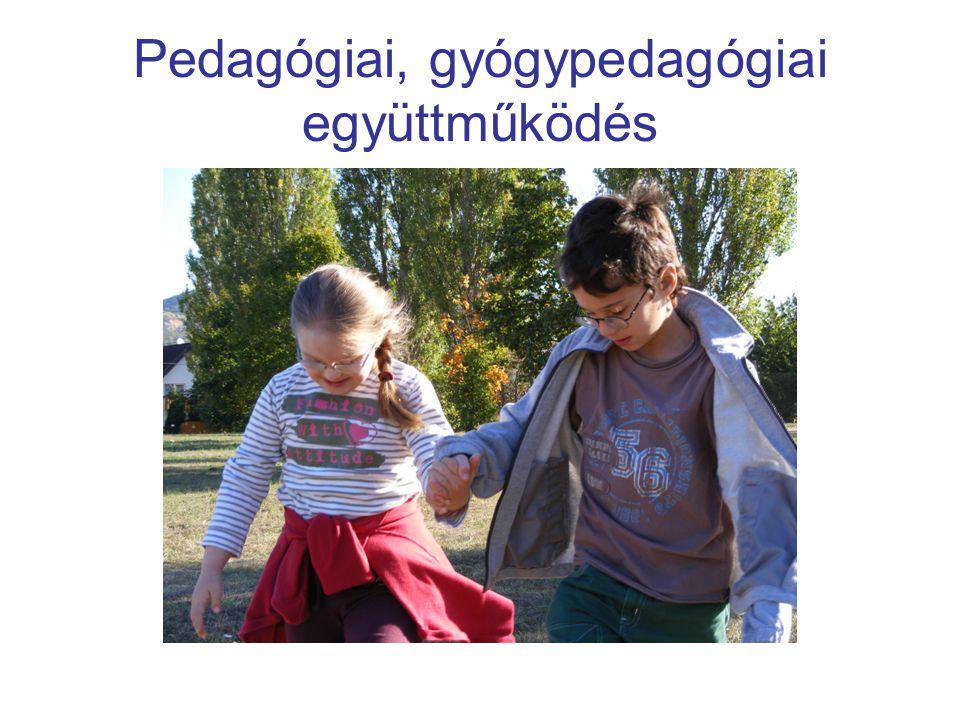 Pedagógiai, gyógypedagógiai együttműködés