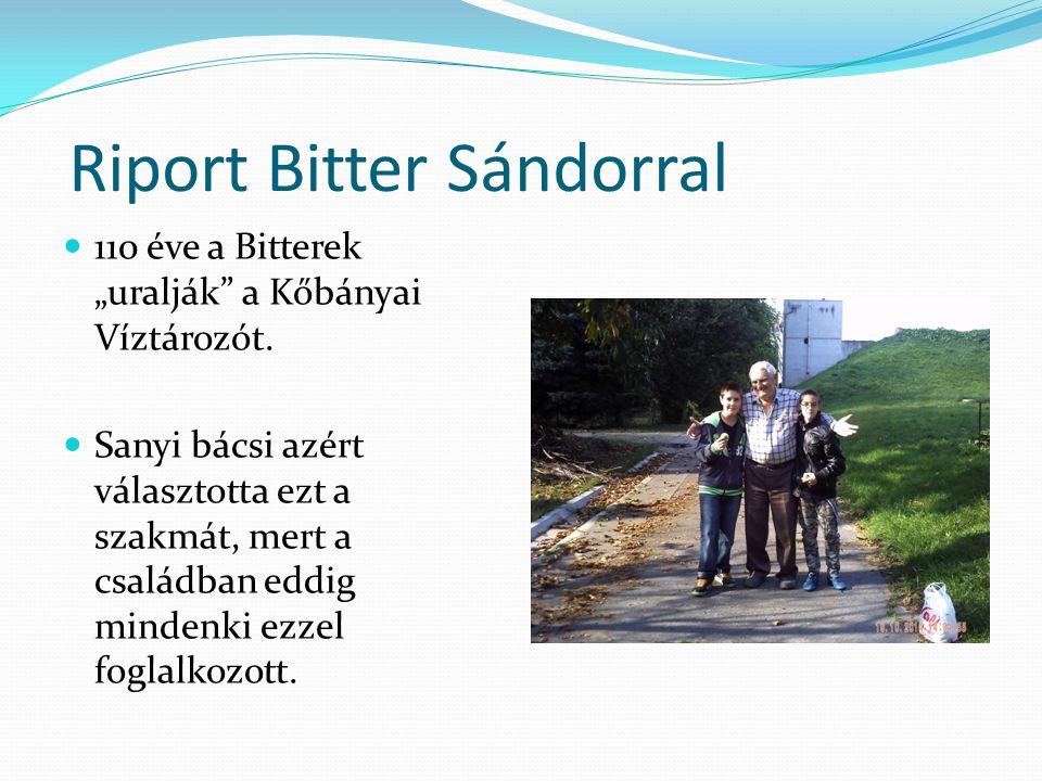 """Riport Bitter Sándorral 110 éve a Bitterek """"uralják a Kőbányai Víztározót."""
