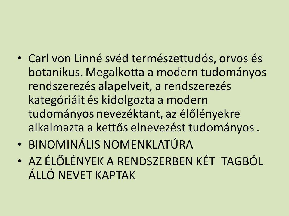 Carl von Linné svéd természettudós, orvos és botanikus. Megalkotta a modern tudományos rendszerezés alapelveit, a rendszerezés kategóriáit és kidolgoz