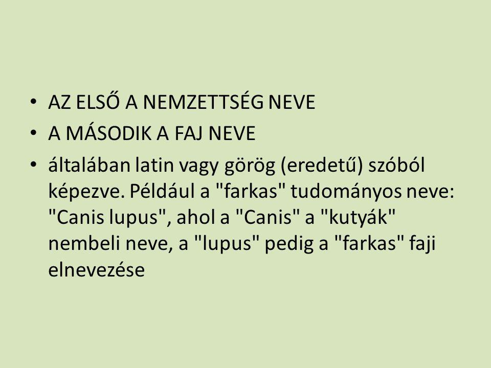 AZ ELSŐ A NEMZETTSÉG NEVE A MÁSODIK A FAJ NEVE általában latin vagy görög (eredetű) szóból képezve. Például a