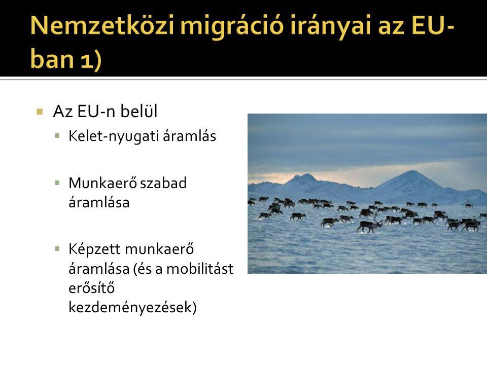  Az EU-n kívülről  1950-80 dél-észak, volt gyarmatokról  Vendégmunkások  80-as évek végétől: kelet-nyugat, SZU utódállamok, posztszocialista országok és újabb hullám a déli EU-s országokba a Maghreb- országaiból  Balkáni válság – új hullám  Harmadik világbeli válságok – újabb, elterülő hullámok