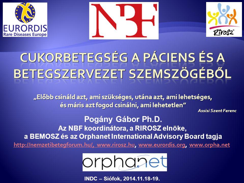 Olyan ernyőszervezet megalakítása, melyet a az egészségügyi érdekképviselet és a közegészségügy terén aktív magyar betegszervezetek hoznak létre és vezetnek.