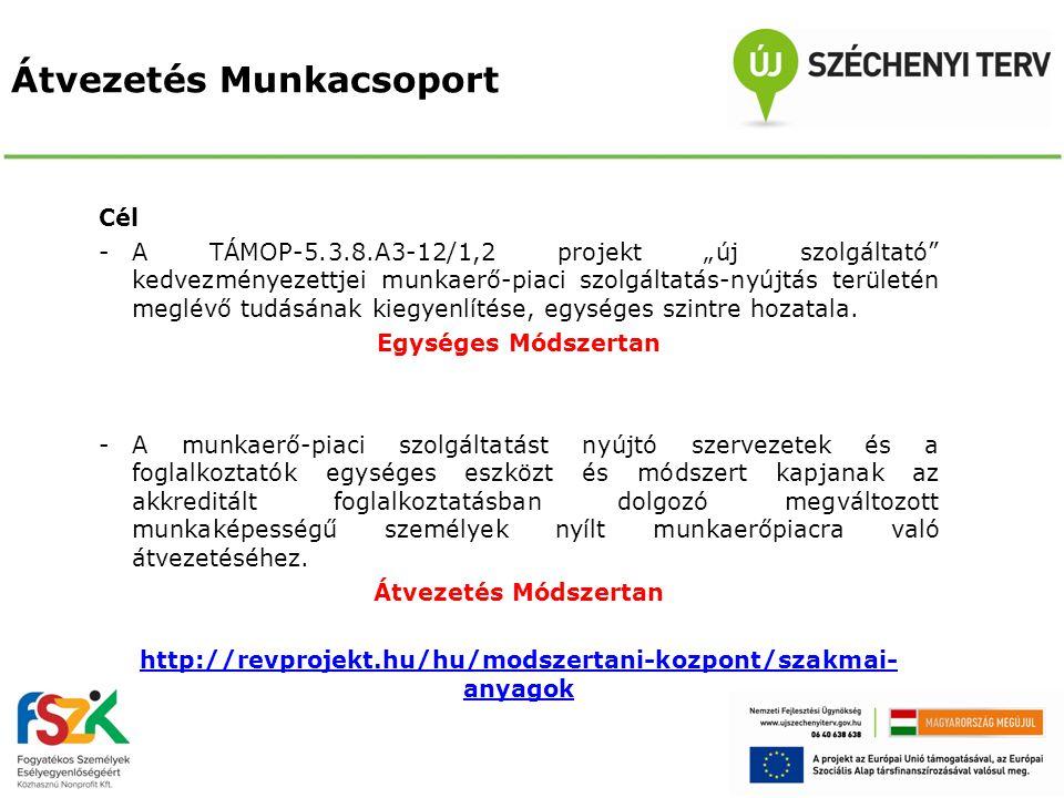 """Átvezetés Munkacsoport Cél -A TÁMOP-5.3.8.A3-12/1,2 projekt """"új szolgáltató"""" kedvezményezettjei munkaerő-piaci szolgáltatás-nyújtás területén meglévő"""