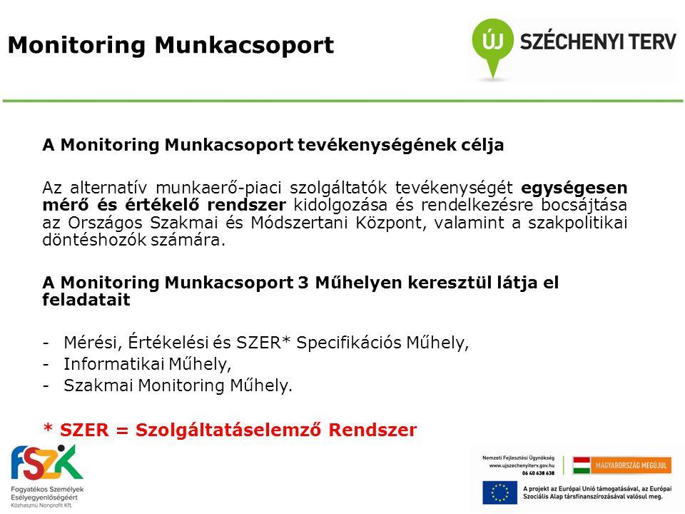 Monitoring Munkacsoport A Monitoring Munkacsoport tevékenységének célja Az alternatív munkaerő-piaci szolgáltatók tevékenységét egységesen mérő és ért