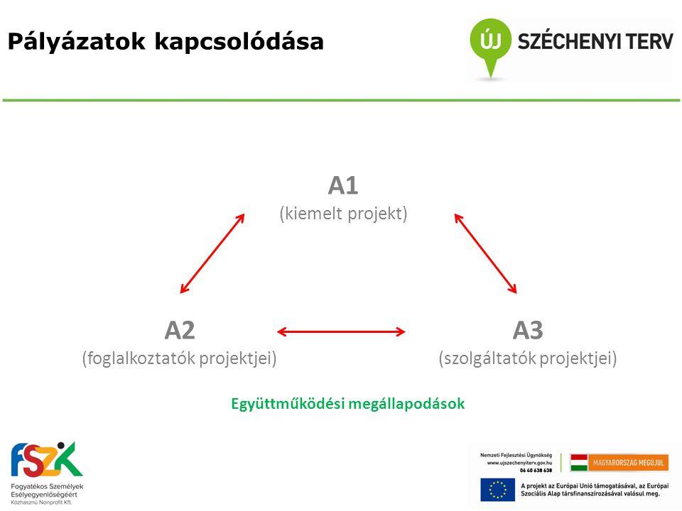 Pályázatok kapcsolódása A1 (kiemelt projekt) A2 (foglalkoztatók projektjei) A3 (szolgáltatók projektjei) Együttműködési megállapodások