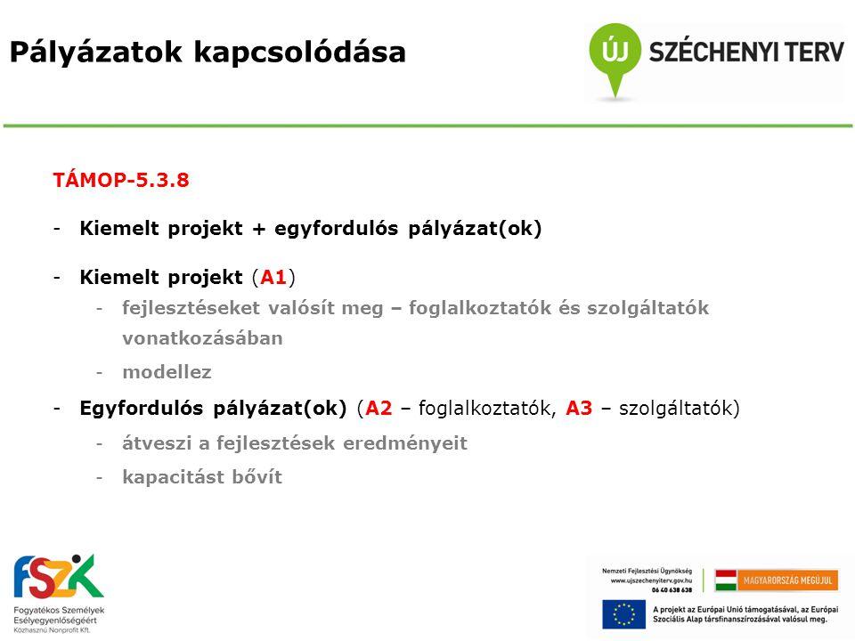 Pályázatok kapcsolódása TÁMOP-5.3.8 -Kiemelt projekt + egyfordulós pályázat(ok) -Kiemelt projekt (A1) -fejlesztéseket valósít meg – foglalkoztatók és
