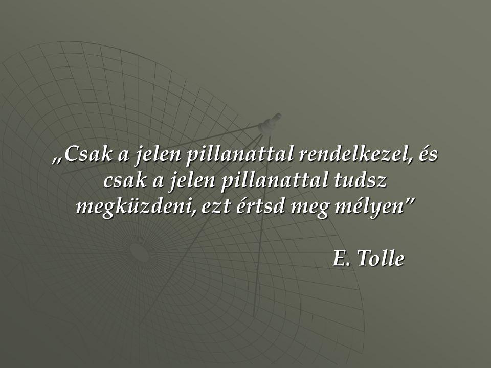 """""""Csak a jelen pillanattal rendelkezel, és csak a jelen pillanattal tudsz megküzdeni, ezt értsd meg mélyen"""" E. Tolle"""