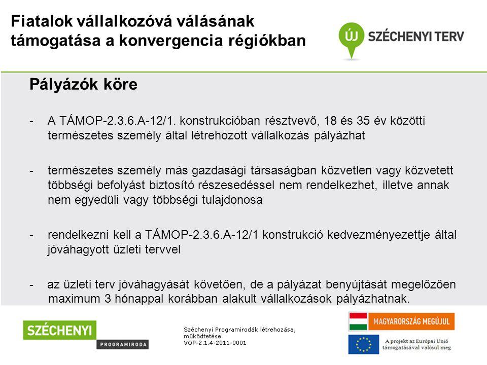 Fiatalok vállalkozóvá válásának támogatása a konvergencia régiókban Pályázók köre -A TÁMOP-2.3.6.A-12/1. konstrukcióban résztvevő, 18 és 35 év közötti