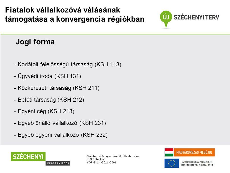 Fiatalok vállalkozóvá válásának támogatása a konvergencia régiókban Méret -a 800/2008/EK rendelet 1.