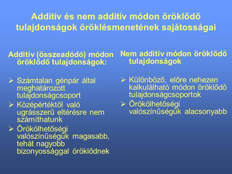 Additív és nem additív módon öröklődő tulajdonságok öröklésmenetének sajátosságai Additív (összeadódó) módon öröklődő tulajdonságok:  Számtalan génpá