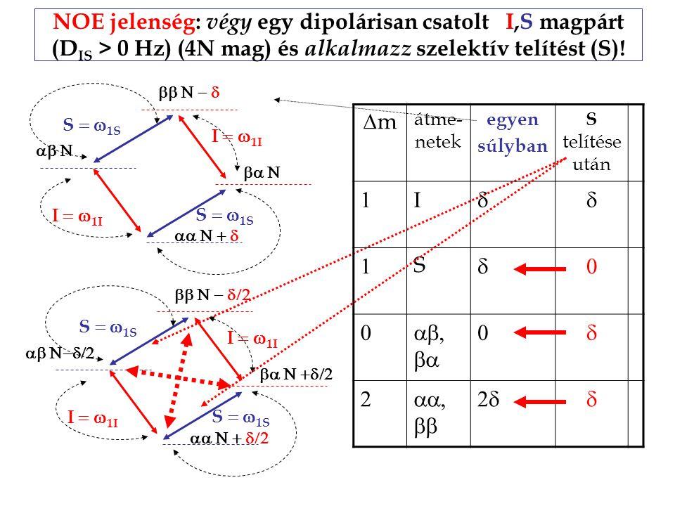 NOE jelenség: végy egy dipolárisan csatolt I,S magpárt (D IS > 0 Hz) (4N mag) és alkalmazz szelektív telítést (S).