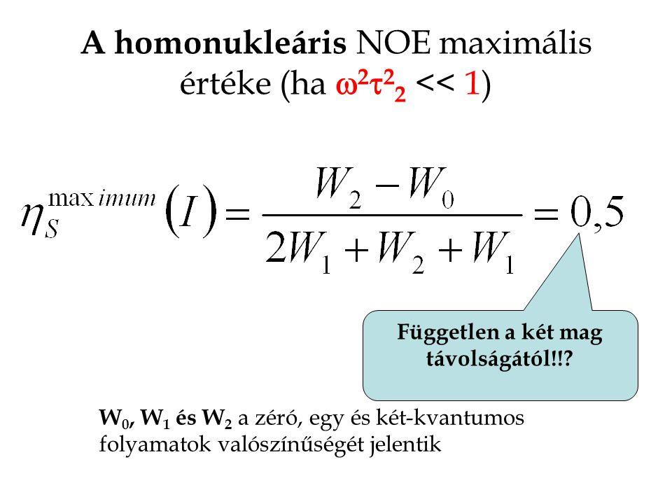 A homonukleáris NOE maximális értéke (ha  2  2 2 << 1) W 0, W 1 és W 2 a zéró, egy és két-kvantumos folyamatok valószínűségét jelentik Független a két mag távolságától!!?