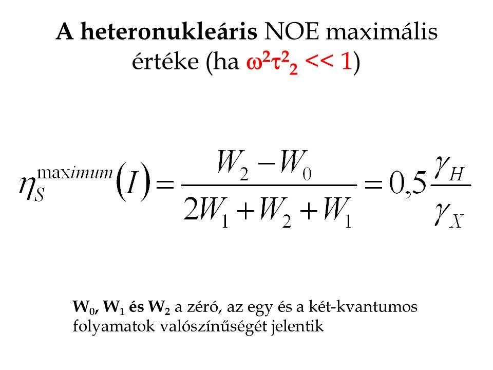 A heteronukleáris NOE maximális értéke (ha  2  2 2 << 1) W 0, W 1 és W 2 a zéró, az egy és a két-kvantumos folyamatok valószínűségét jelentik