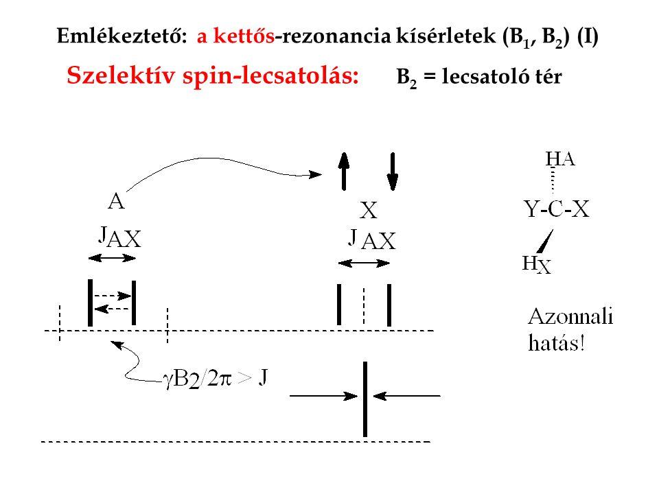 Emlékeztető: a kettős-rezonancia kísérletek (B 1, B 2 ) (I) Szelektív spin-lecsatolás: B 2 = lecsatoló tér