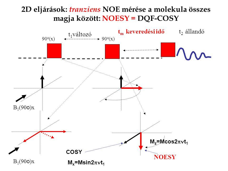 2D eljárások: tranziens NOE mérése a molekula összes magja között: NOESY = DQF-COSY 90 o (x) t 2 állandó 90 o (x) t 1 változó B 1 (90 o )x COSY M x =Msin2  t 1 M z =Mcos2  t 1 B 1 (90 o )x t m keveredési idő NOESY
