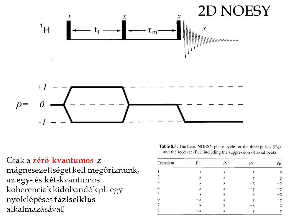 2D NOESY Csak a zéró-kvantumos z- mágnesezettséget kell megőriznünk, az egy - és két -kvantumos koherenciák kidobandók pl.