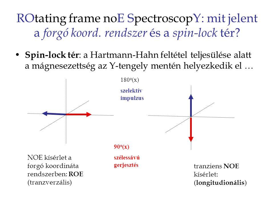 ROtating frame noE SpectroscopY: mit jelent a forgó koord.