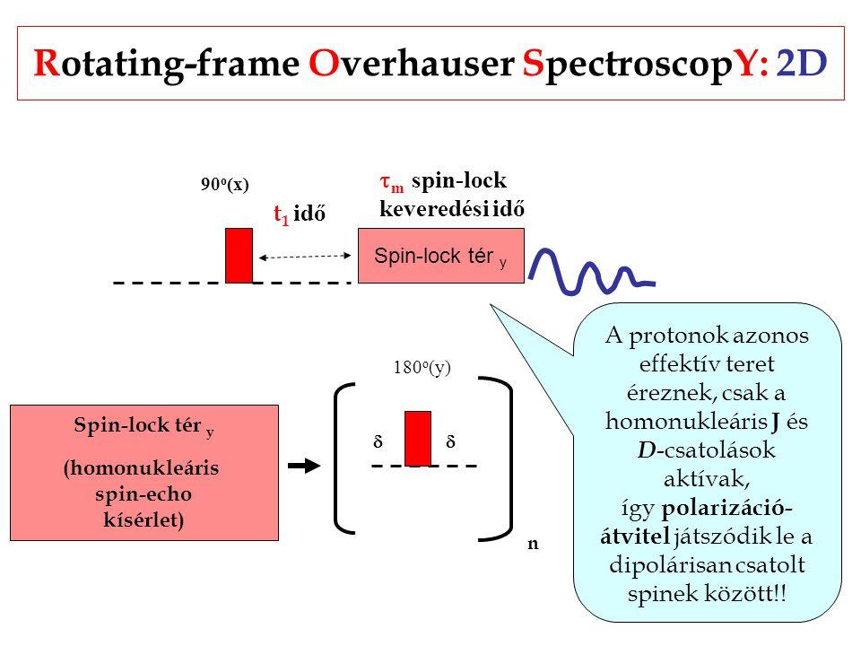 Rotating-frame Overhauser SpectroscopY: 2D Spin-lock tér y 90 o (x)  m spin-lock keveredési idő t 1 idő Spin-lock tér y (homonukleáris spin-echo kísérlet) 180 o (y)  n A protonok azonos effektív teret éreznek, csak a homonukleáris J és D -csatolások aktívak, így polarizáció- átvitel játszódik le a dipolárisan csatolt spinek között!!