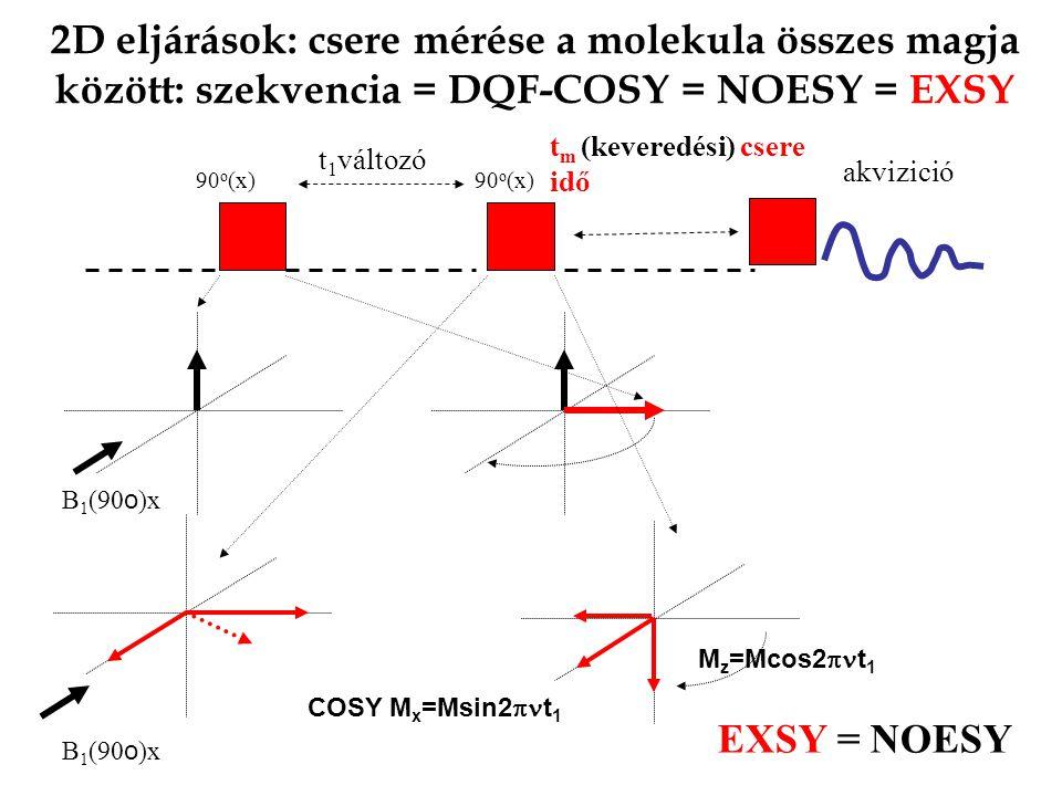 2D eljárások: csere mérése a molekula összes magja között: szekvencia = DQF-COSY = NOESY = EXSY 90 o (x) akvizició 90 o (x) t 1 változó B 1 (90 o )x COSY M x =Msin2  t 1 M z =Mcos2  t 1 B 1 (90 o )x t m (keveredési) csere idő EXSY = NOESY