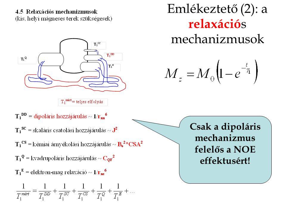Emlékeztető (2): a relaxáció s mechanizmusok Csak a dipoláris mechanizmus felelős a NOE effektusért!