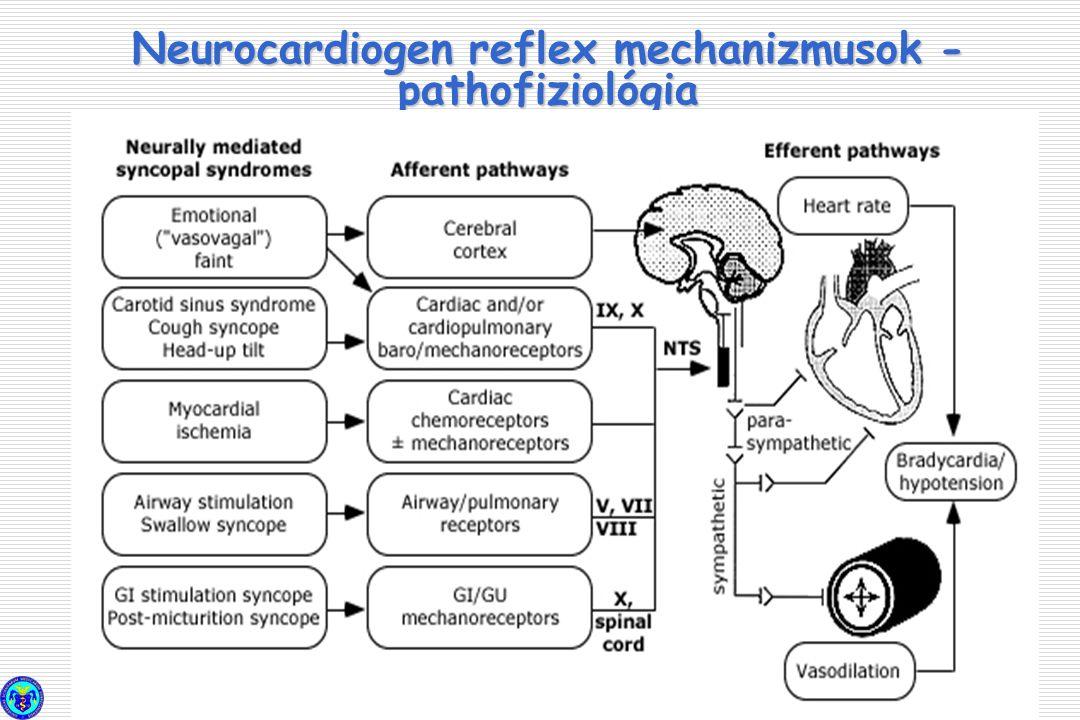 Neurocardiogen reflex mechanizmusok - pathofiziológia
