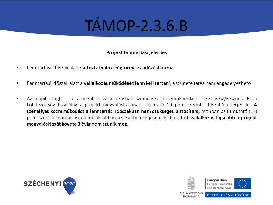 TÁMOP-2.3.6.B Projekt fenntartási jelentés Fenntartási időszak alatt változtatható a cégforma és adózási forma Fenntartási időszak alatt a vállalkozás működését fenn kell tartani, a szüneteltetés nem engedélyezhető Az alapító tag(ok) a támogatott vállalkozásban személyes közreműködőként részt vesz/vesznek.