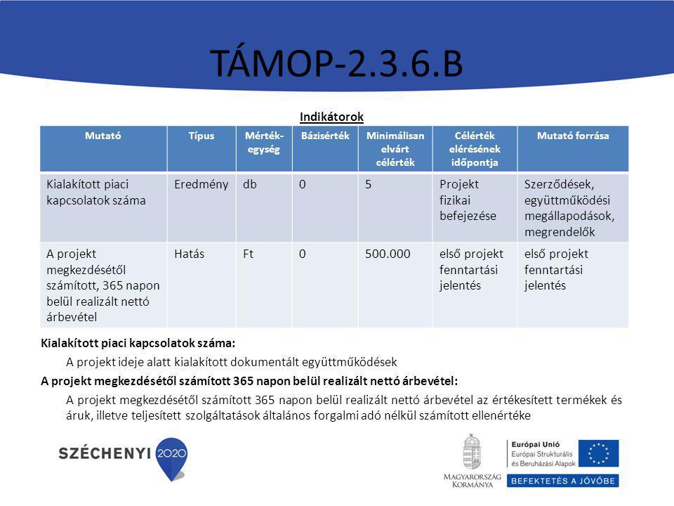 TÁMOP-2.3.6.B Indikátorok Kialakított piaci kapcsolatok száma: A projekt ideje alatt kialakított dokumentált együttműködések A projekt megkezdésétől számított 365 napon belül realizált nettó árbevétel: A projekt megkezdésétől számított 365 napon belül realizált nettó árbevétel az értékesített termékek és áruk, illetve teljesített szolgáltatások általános forgalmi adó nélkül számított ellenértéke MutatóTípusMérték- egység BázisértékMinimálisan elvárt célérték Célérték elérésének időpontja Mutató forrása Kialakított piaci kapcsolatok száma Eredménydb05Projekt fizikai befejezése Szerződések, együttműködési megállapodások, megrendelők A projekt megkezdésétől számított, 365 napon belül realizált nettó árbevétel HatásFt0500.000első projekt fenntartási jelentés első projekt fenntartási jelentés
