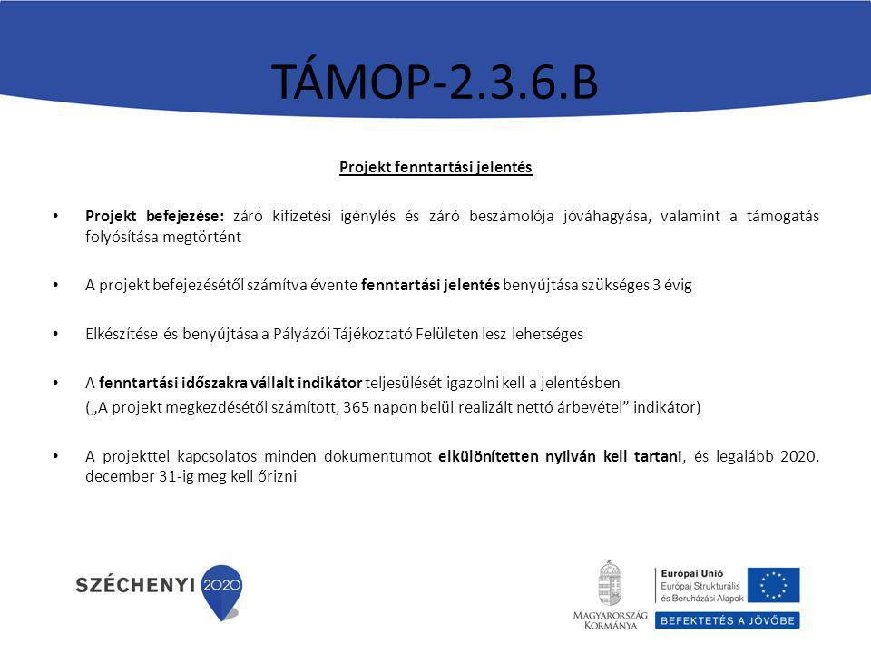 """TÁMOP-2.3.6.B Projekt fenntartási jelentés Projekt befejezése: záró kifizetési igénylés és záró beszámolója jóváhagyása, valamint a támogatás folyósítása megtörtént A projekt befejezésétől számítva évente fenntartási jelentés benyújtása szükséges 3 évig Elkészítése és benyújtása a Pályázói Tájékoztató Felületen lesz lehetséges A fenntartási időszakra vállalt indikátor teljesülését igazolni kell a jelentésben (""""A projekt megkezdésétől számított, 365 napon belül realizált nettó árbevétel indikátor) A projekttel kapcsolatos minden dokumentumot elkülönítetten nyilván kell tartani, és legalább 2020."""