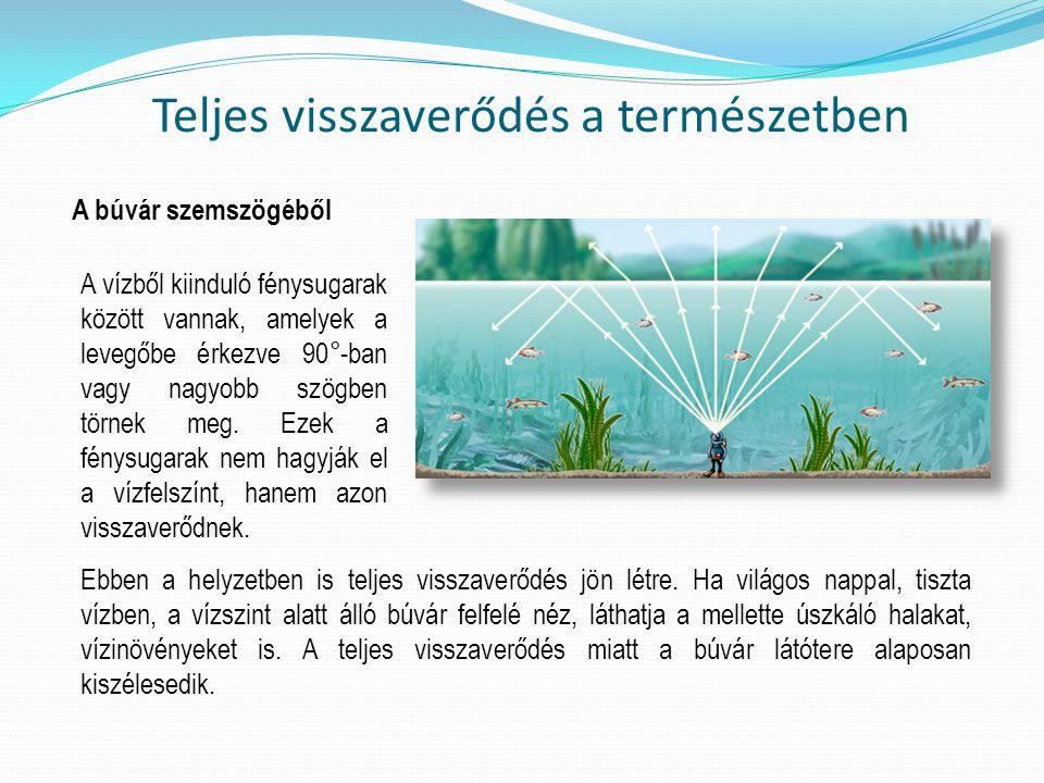 Teljes visszaverődés a természetben A búvár szemszögéből A vízből kiinduló fénysugarak között vannak, amelyek a levegőbe érkezve 90°-ban vagy nagyobb