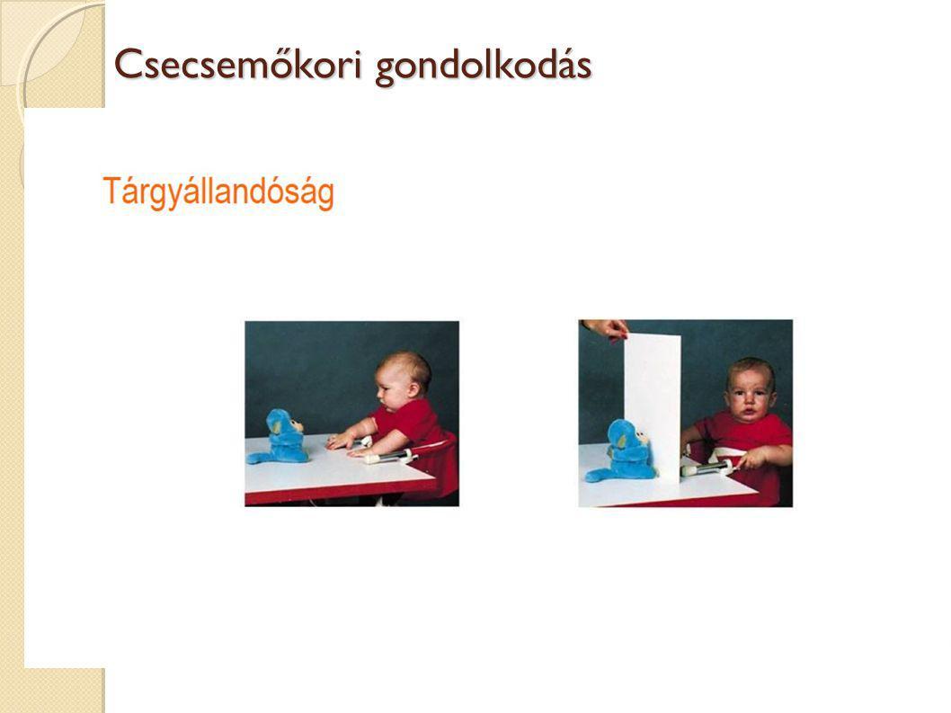 Csecsemőkori gondolkodás Piaget vs. kompetens baba