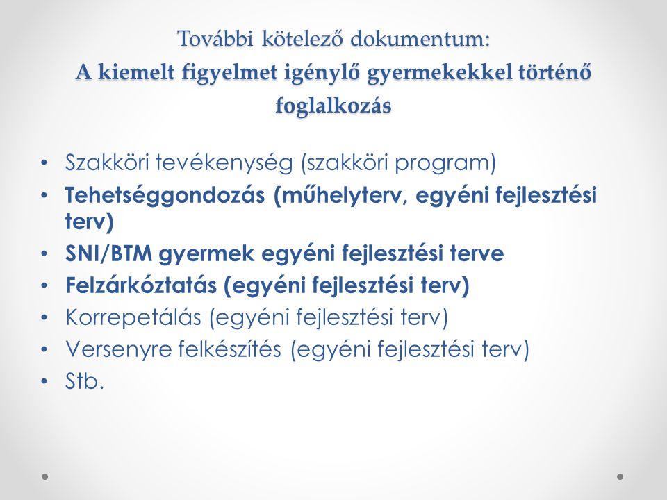 További kötelező dokumentum: A kiemelt figyelmet igénylő gyermekekkel történő foglalkozás Szakköri tevékenység (szakköri program) Tehetséggondozás (műhelyterv, egyéni fejlesztési terv) SNI/BTM gyermek egyéni fejlesztési terve Felzárkóztatás (egyéni fejlesztési terv) Korrepetálás (egyéni fejlesztési terv) Versenyre felkészítés (egyéni fejlesztési terv) Stb.