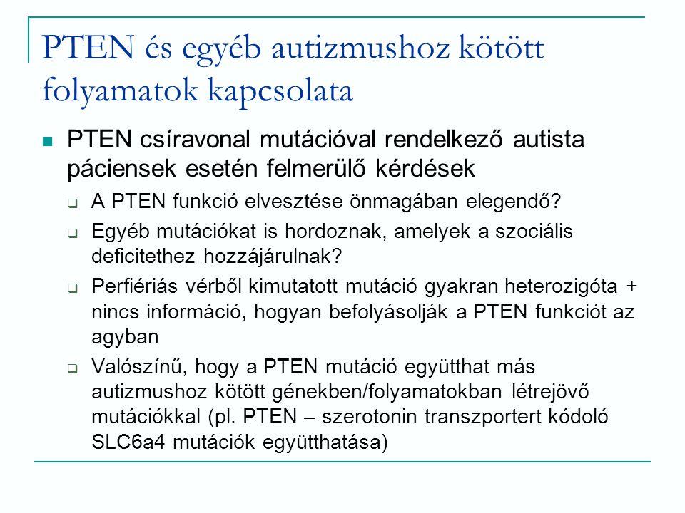 PTEN és egyéb autizmushoz kötött folyamatok kapcsolata PTEN csíravonal mutációval rendelkező autista páciensek esetén felmerülő kérdések  A PTEN funk